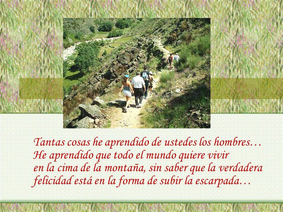 Tantas cosas he aprendido de ustedes los hombres… He aprendido que todo el mundo quiere vivir en la cima de la montaña, sin saber que la verdadera felicidad está en la forma de subir la escarpada…