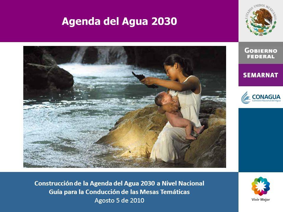 Agenda del Agua 2030 Ing. José Luis Luege Tamargo Director General