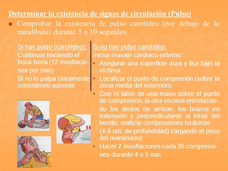 Determinar la existencia de signos de circulación (Pulso)