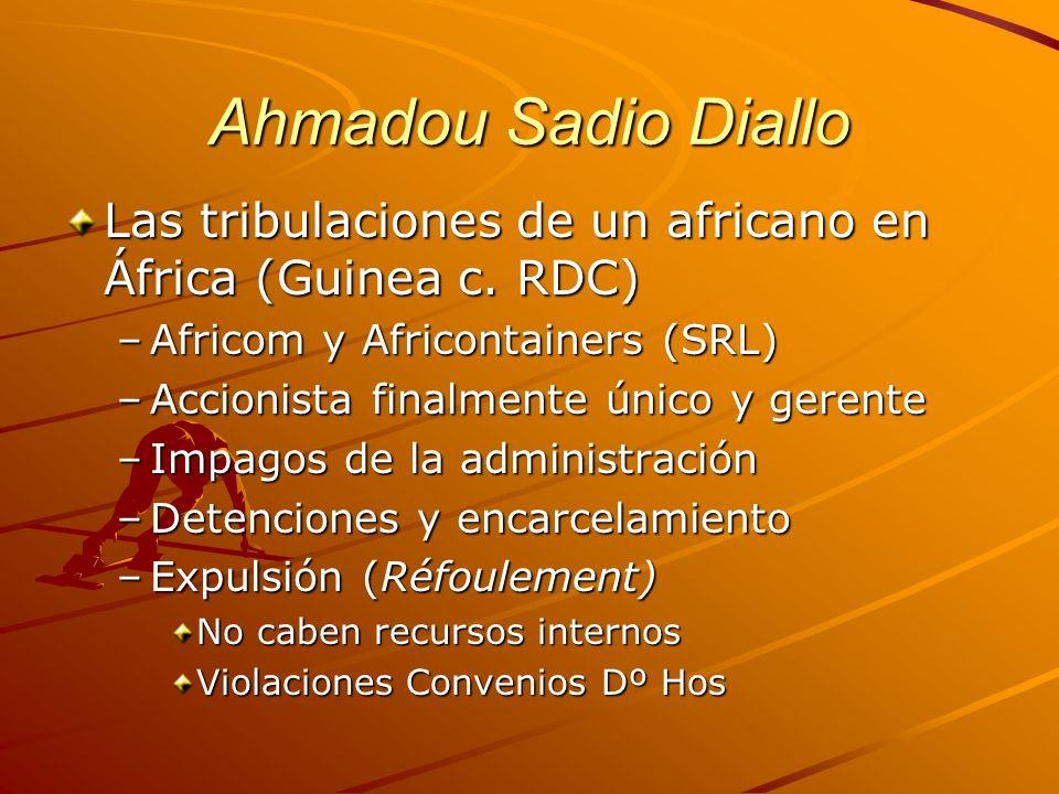 Ahmadou Sadio Diallo Las tribulaciones de un africano en África (Guinea c. RDC) Africom y Africontainers (SRL)
