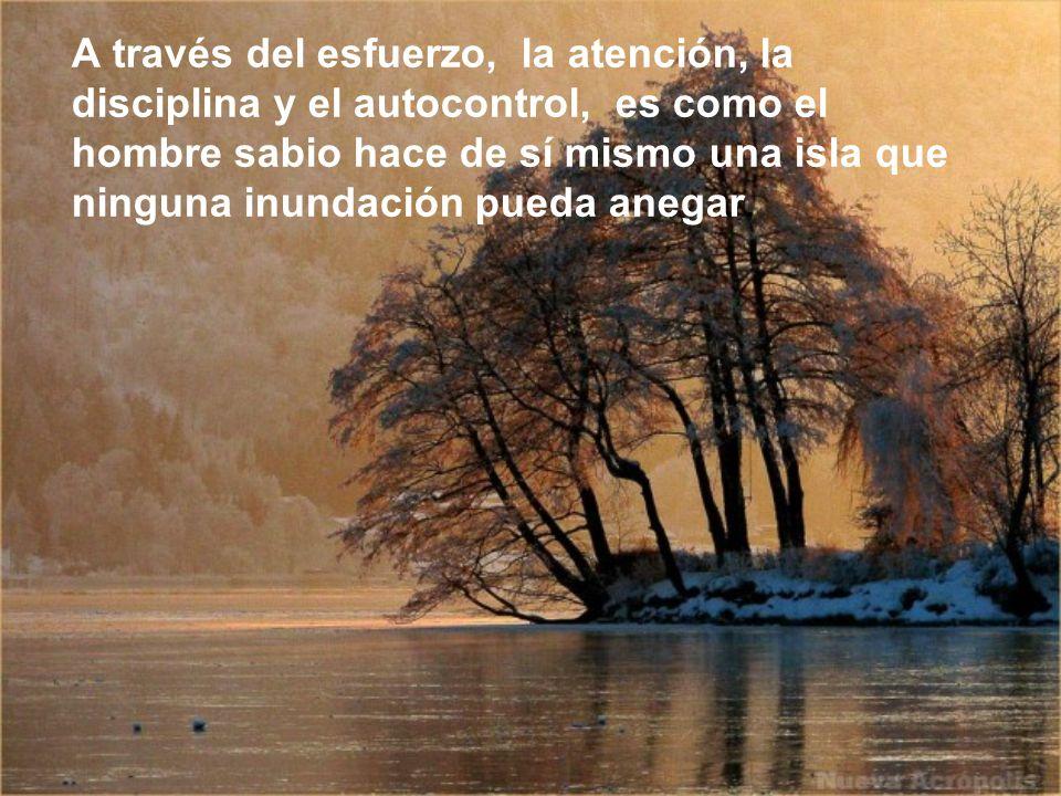 A través del esfuerzo, la atención, la disciplina y el autocontrol, es como el hombre sabio hace de sí mismo una isla que ninguna inundación pueda anegar.
