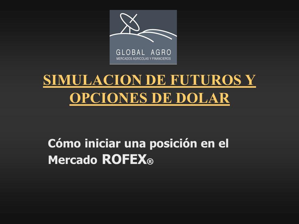 SIMULACION DE FUTUROS Y OPCIONES DE DOLAR