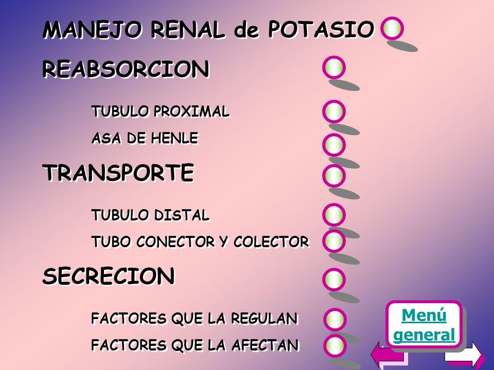 MANEJO RENAL de POTASIO REABSORCION TUBULO PROXIMAL TRANSPORTE