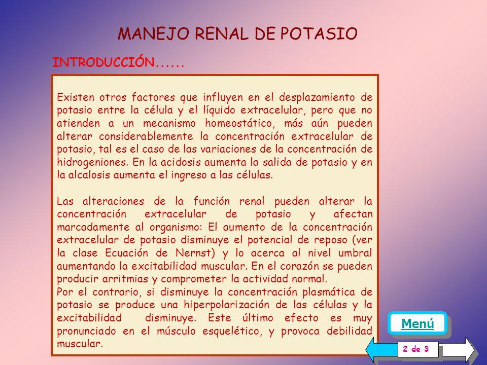 MANEJO RENAL DE POTASIO