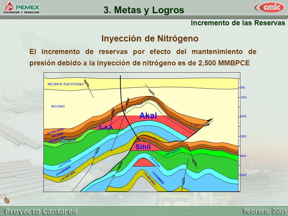 3. Metas y Logros Inyección de Nitrógeno Akal