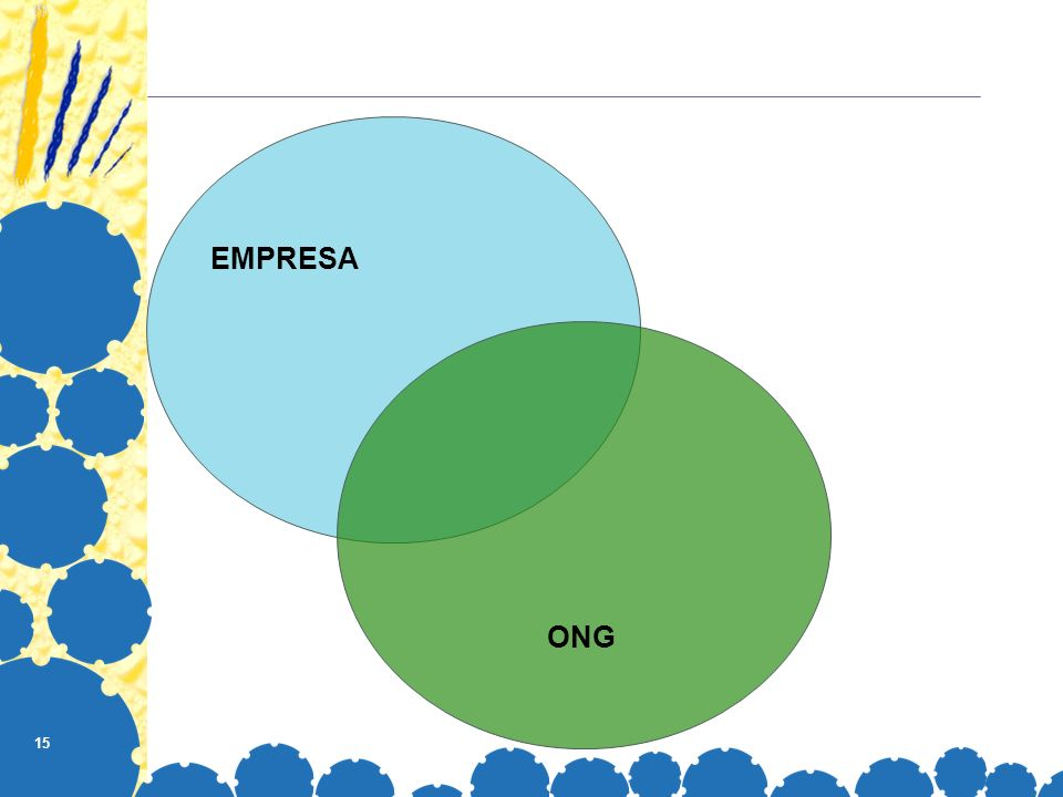 EMPRESA ONG