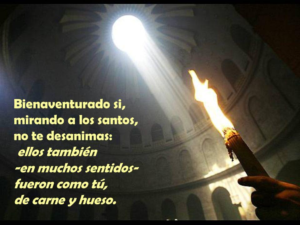 Bienaventurado si, mirando a los santos, no te desanimas: ellos también -en muchos sentidos- fueron como tú, de carne y hueso.
