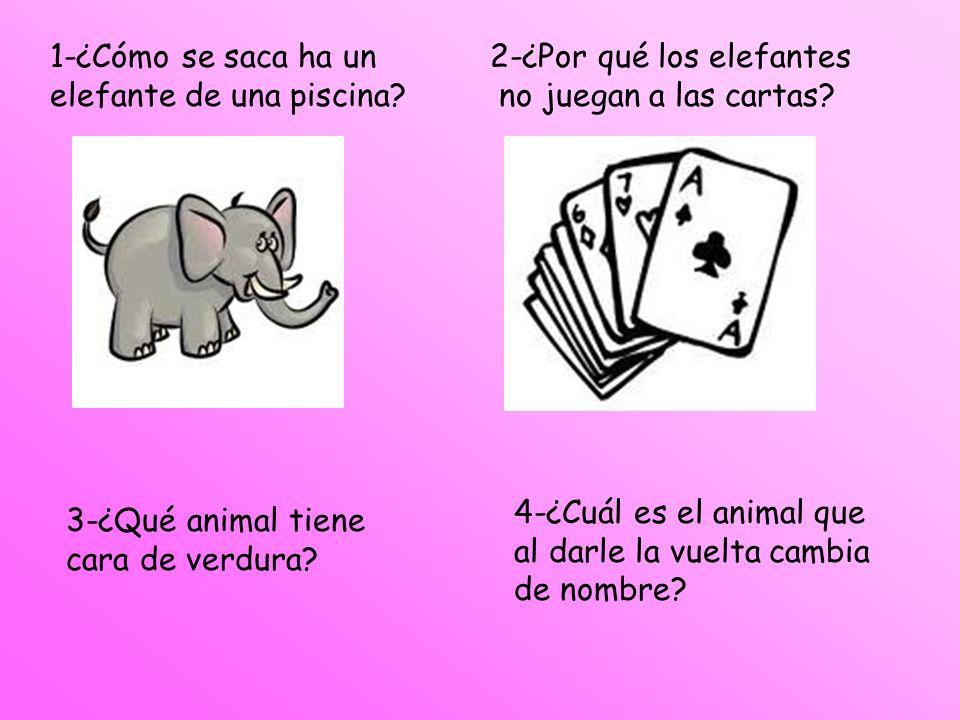 1-¿Cómo se saca ha un elefante de una piscina 2-¿Por qué los elefantes. no juegan a las cartas 4-¿Cuál es el animal que.
