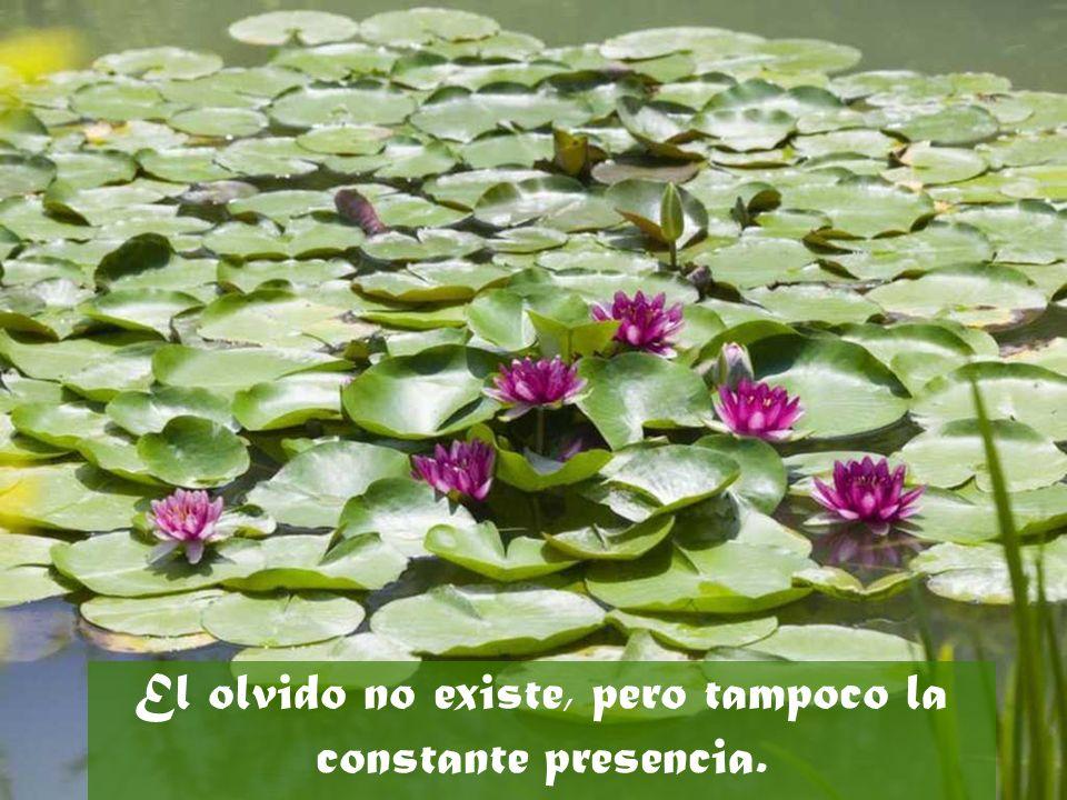 El olvido no existe, pero tampoco la constante presencia.