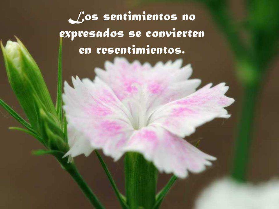 Los sentimientos no expresados se convierten en resentimientos.