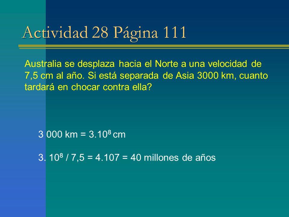 Actividad 28 Página 111