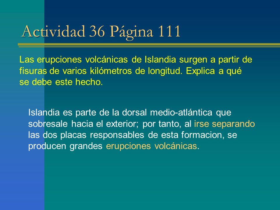 Actividad 36 Página 111