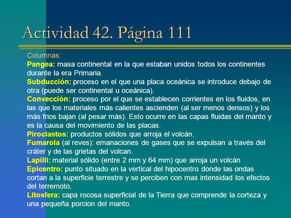Actividad 42. Página 111 Columnas: