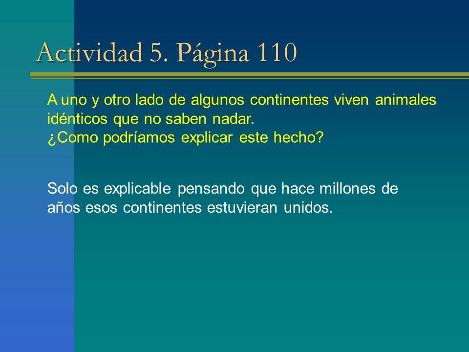 Actividad 5. Página 110 A uno y otro lado de algunos continentes viven animales idénticos que no saben nadar.