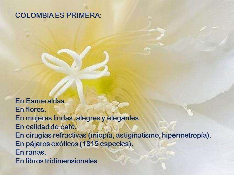 COLOMBIA ES PRIMERA: En Esmeraldas. En flores. En mujeres lindas, alegres y elegantes. En calidad de café.