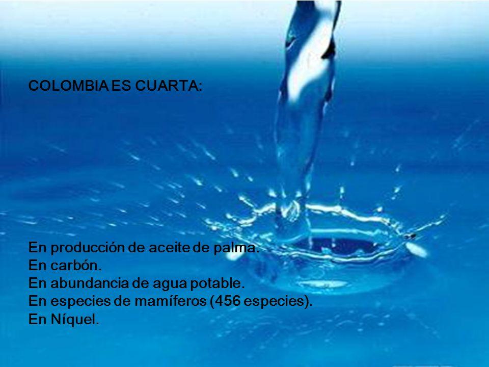 COLOMBIA ES CUARTA: En producción de aceite de palma. En carbón. En abundancia de agua potable. En especies de mamíferos (456 especies).