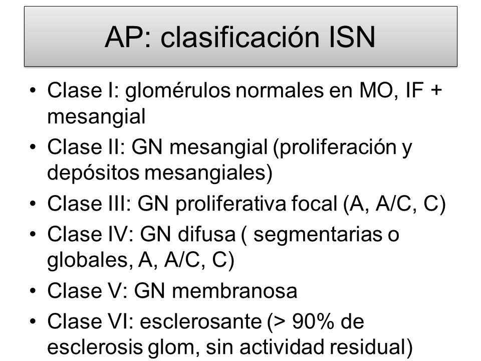 AP: clasificación ISN Clase I: glomérulos normales en MO, IF + mesangial. Clase II: GN mesangial (proliferación y depósitos mesangiales)