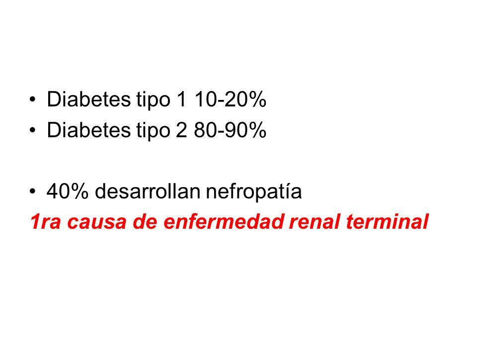 Diabetes tipo 1 10-20% Diabetes tipo 2 80-90% 40% desarrollan nefropatía.