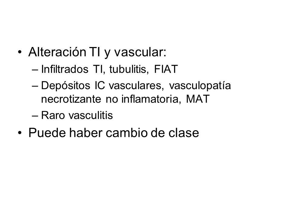 Alteración TI y vascular:
