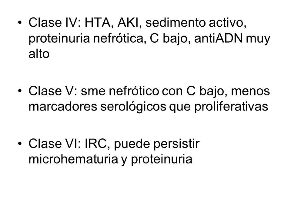 Clase IV: HTA, AKI, sedimento activo, proteinuria nefrótica, C bajo, antiADN muy alto