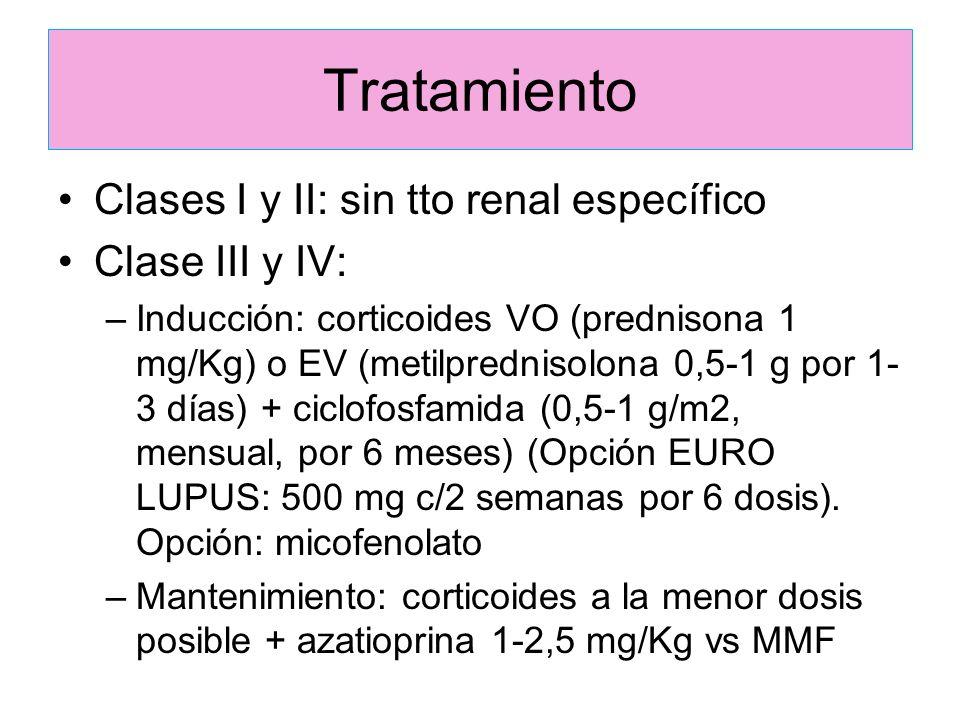 Tratamiento Clases I y II: sin tto renal específico Clase III y IV: