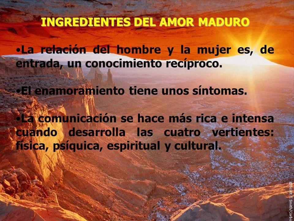 INGREDIENTES DEL AMOR MADURO