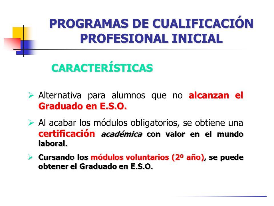 PROGRAMAS DE CUALIFICACIÓN PROFESIONAL INICIAL