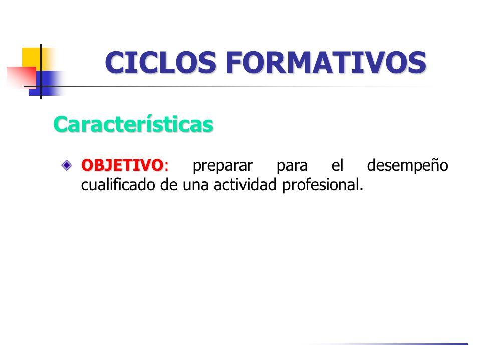 CICLOS FORMATIVOS Características