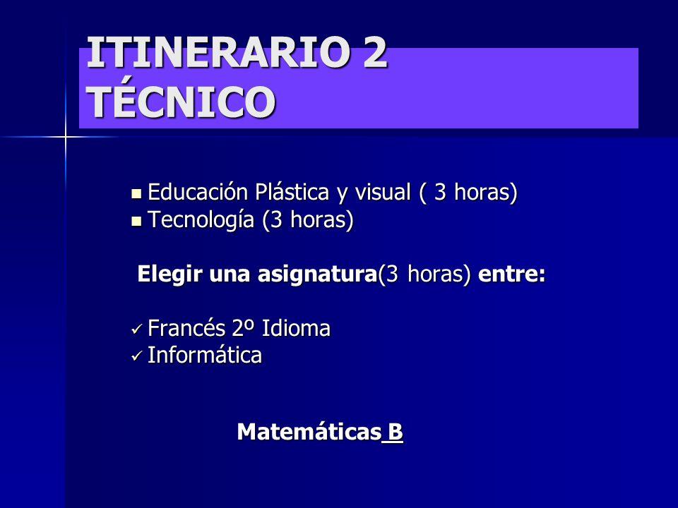 ITINERARIO 2 TÉCNICO Educación Plástica y visual ( 3 horas)