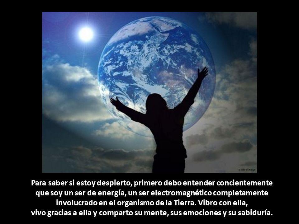 Para saber si estoy despierto, primero debo entender concientemente que soy un ser de energía, un ser electromagnético completamente involucrado en el organismo de la Tierra.