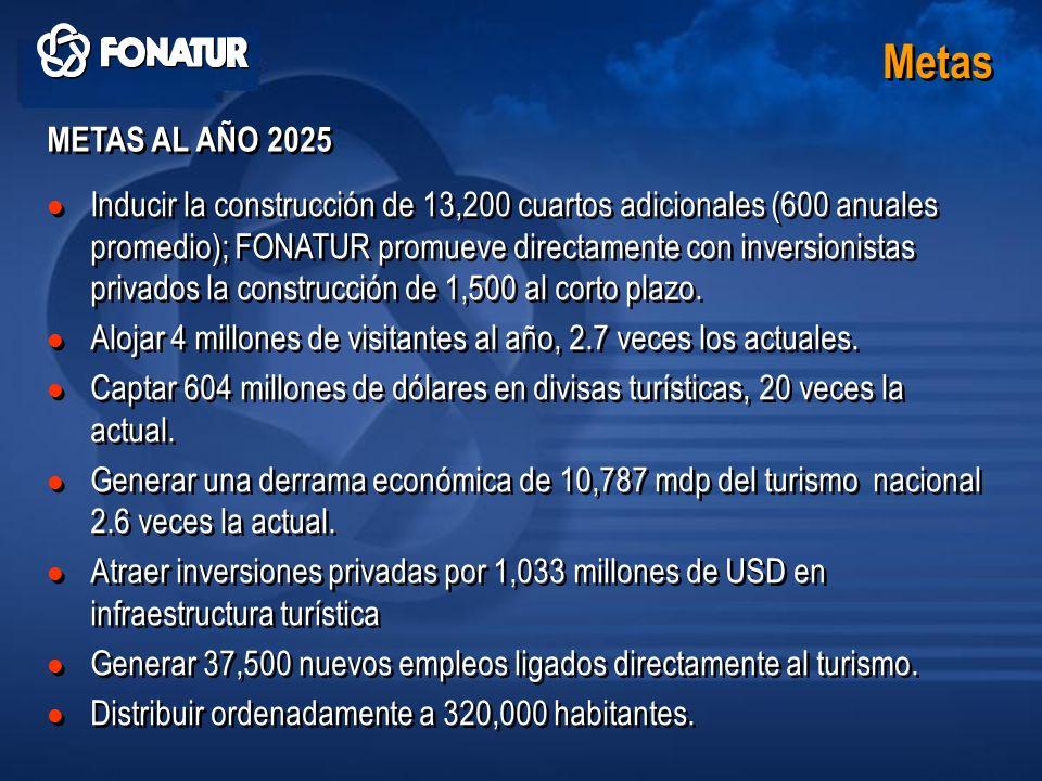 Metas METAS AL AÑO 2025.