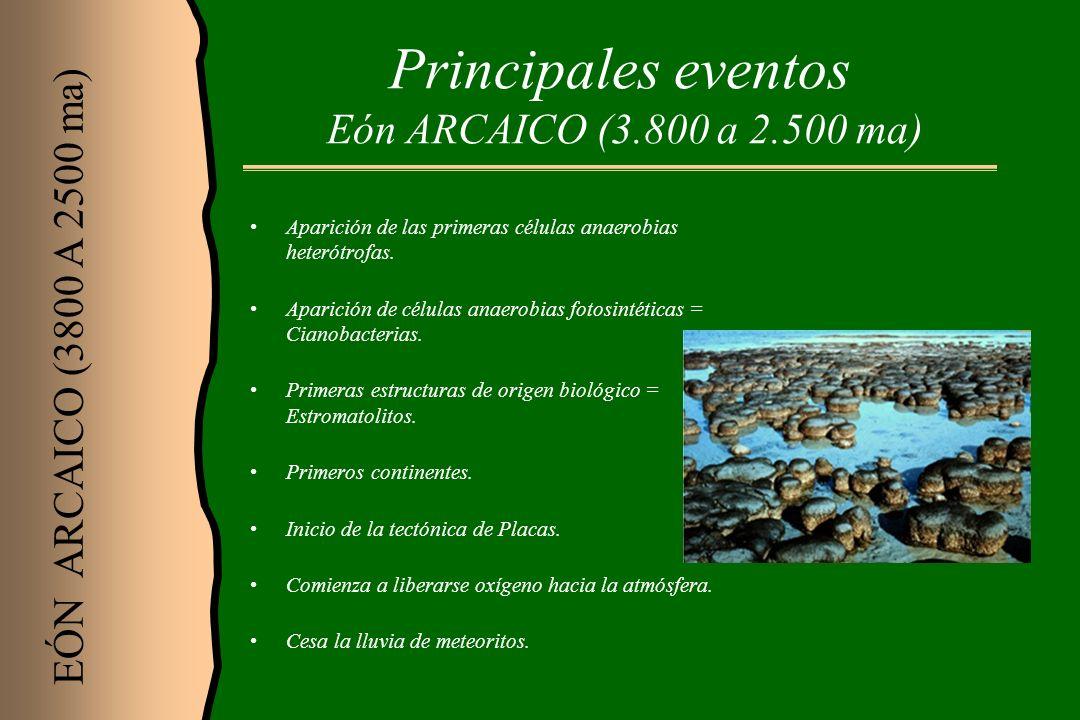 Principales eventos Eón ARCAICO (3.800 a 2.500 ma)