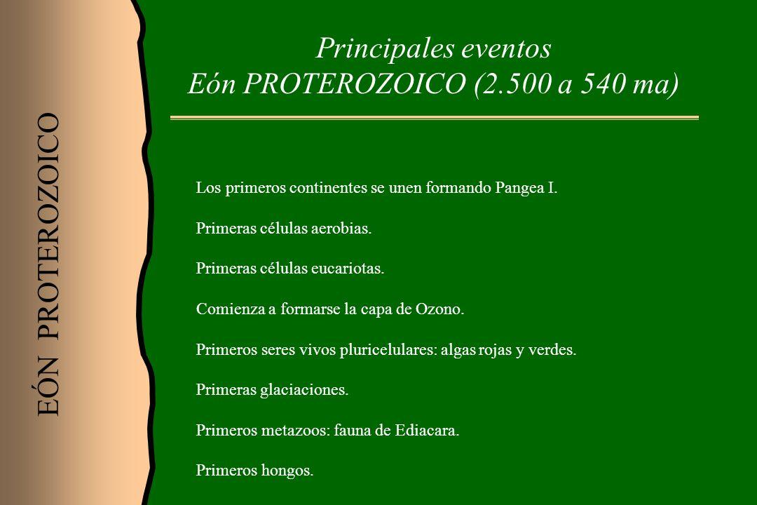 Principales eventos Eón PROTEROZOICO (2.500 a 540 ma)