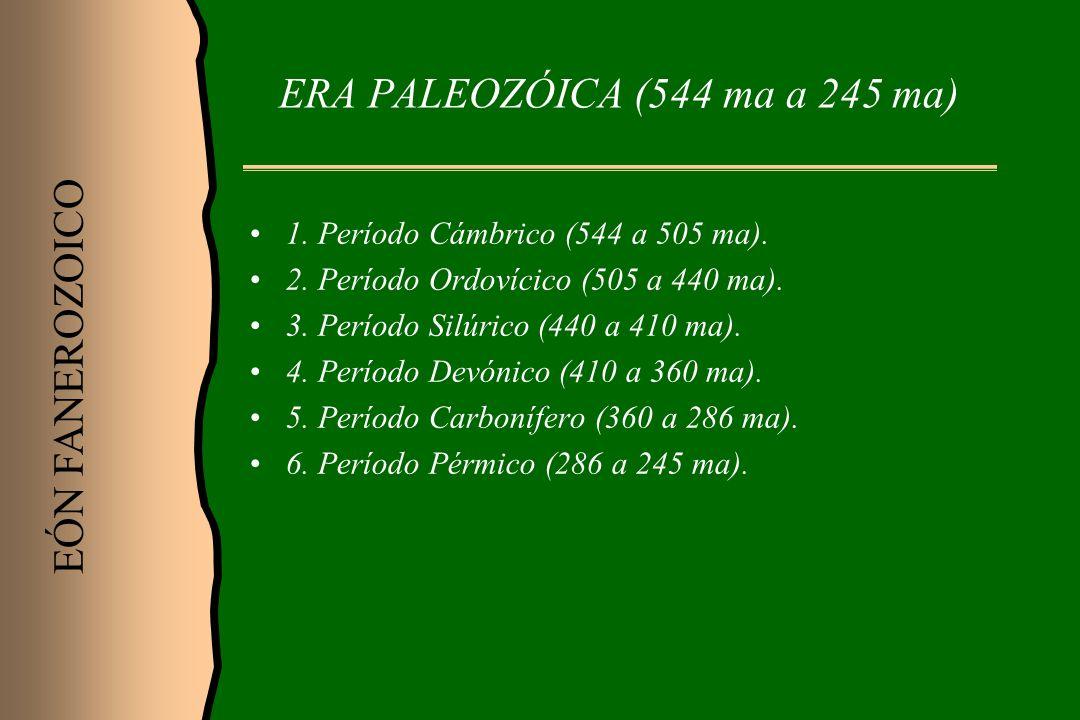 ERA PALEOZÓICA (544 ma a 245 ma)