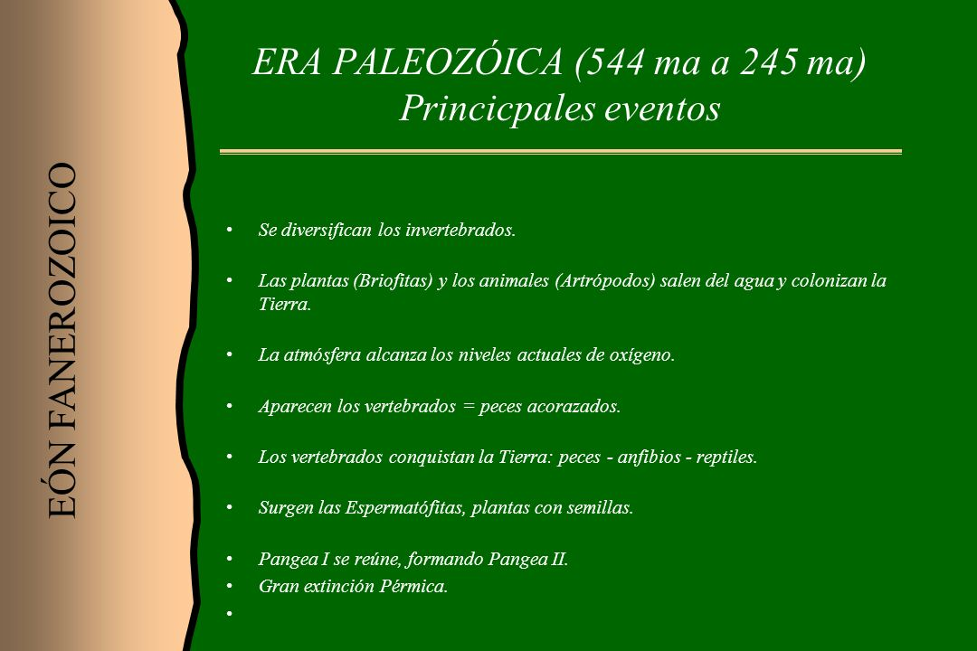 ERA PALEOZÓICA (544 ma a 245 ma) Princicpales eventos