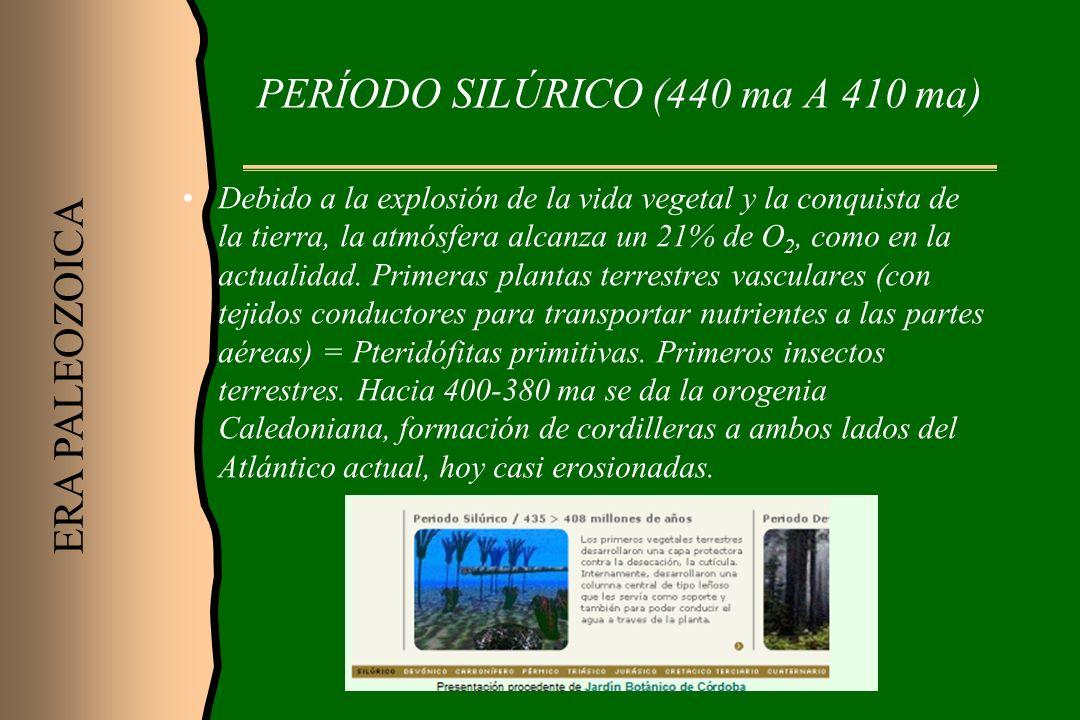 PERÍODO SILÚRICO (440 ma A 410 ma)
