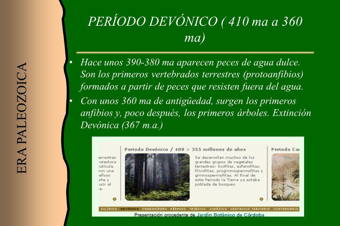 PERÍODO DEVÓNICO ( 410 ma a 360 ma)