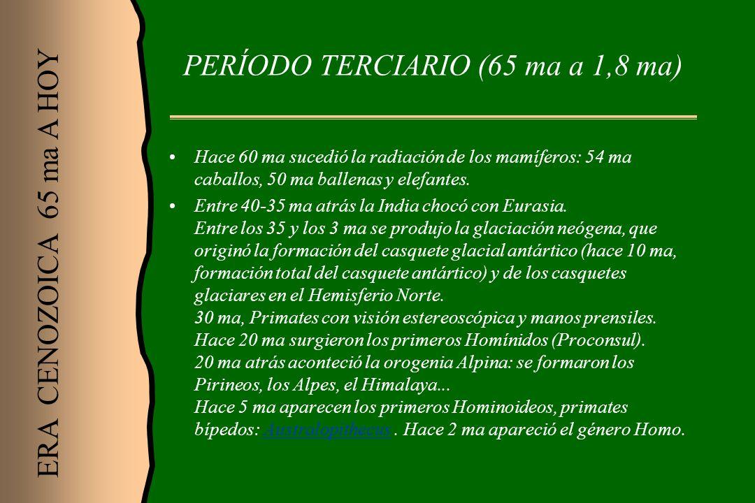 PERÍODO TERCIARIO (65 ma a 1,8 ma)