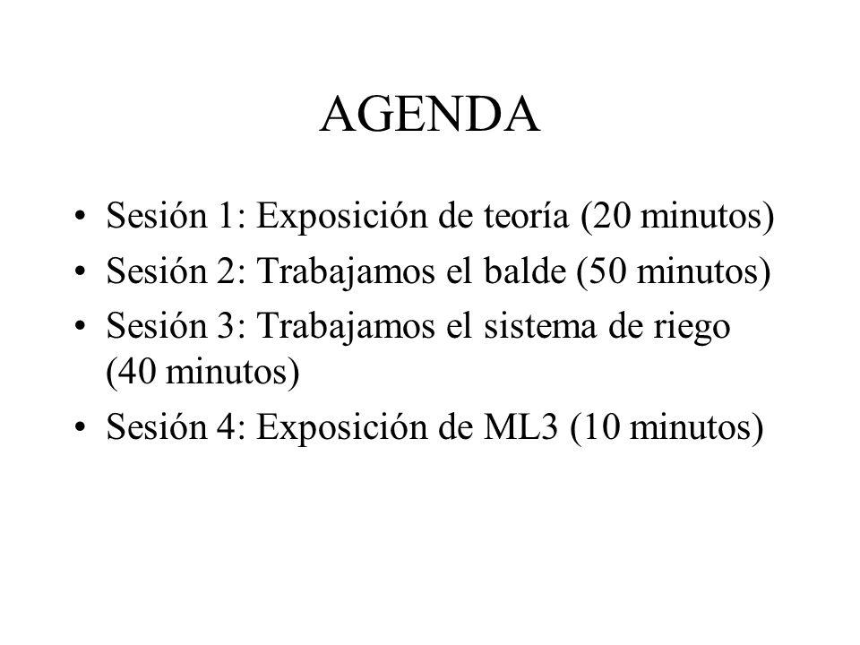 AGENDA Sesión 1: Exposición de teoría (20 minutos)