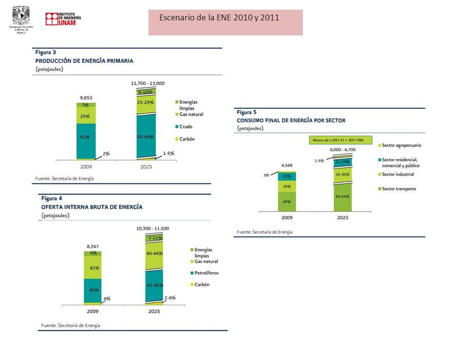 Escenario de la ENE 2010 y 2011