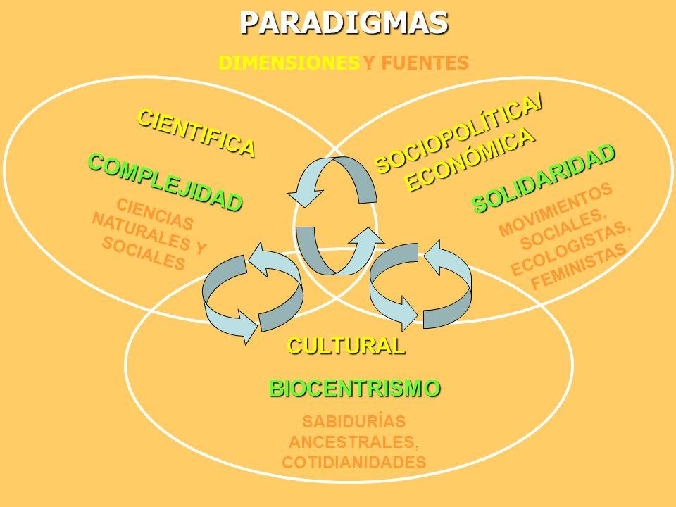 PARADIGMAS SOCIOPOLÍTICA/ECONÓMICA CIENTIFICA SOLIDARIDAD COMPLEJIDAD
