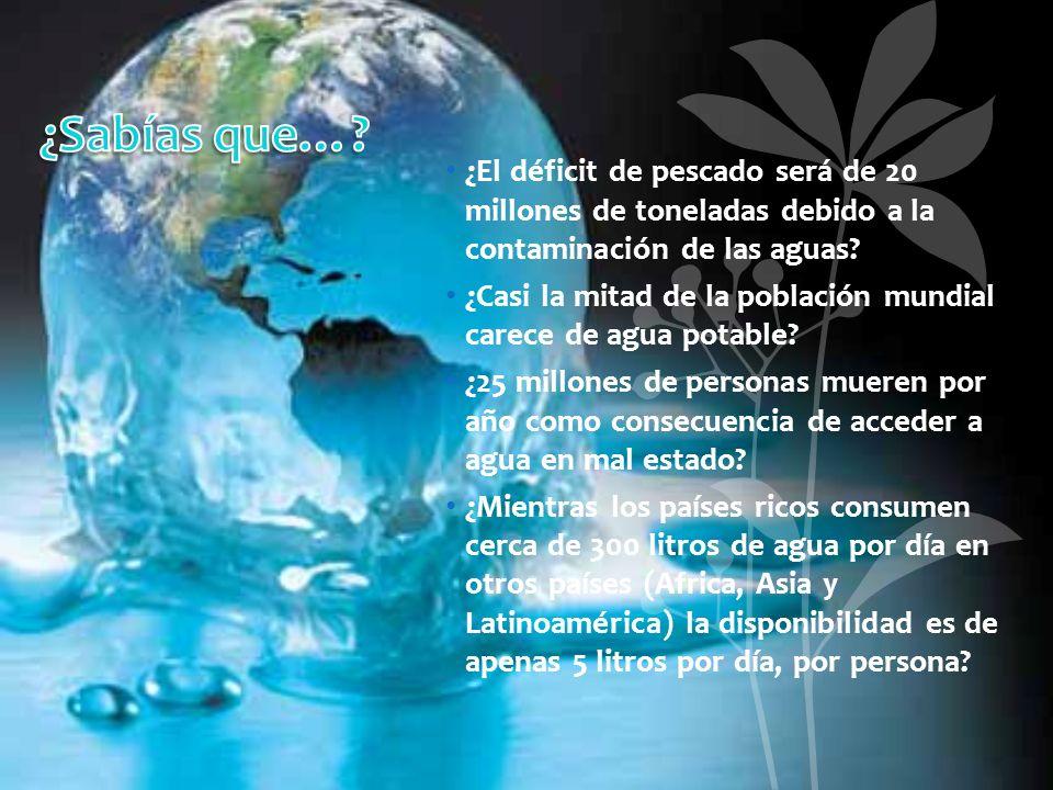 ¿Sabías que… ¿El déficit de pescado será de 20 millones de toneladas debido a la contaminación de las aguas