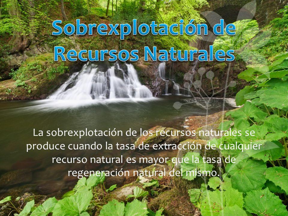 Sobrexplotación de Recursos Naturales