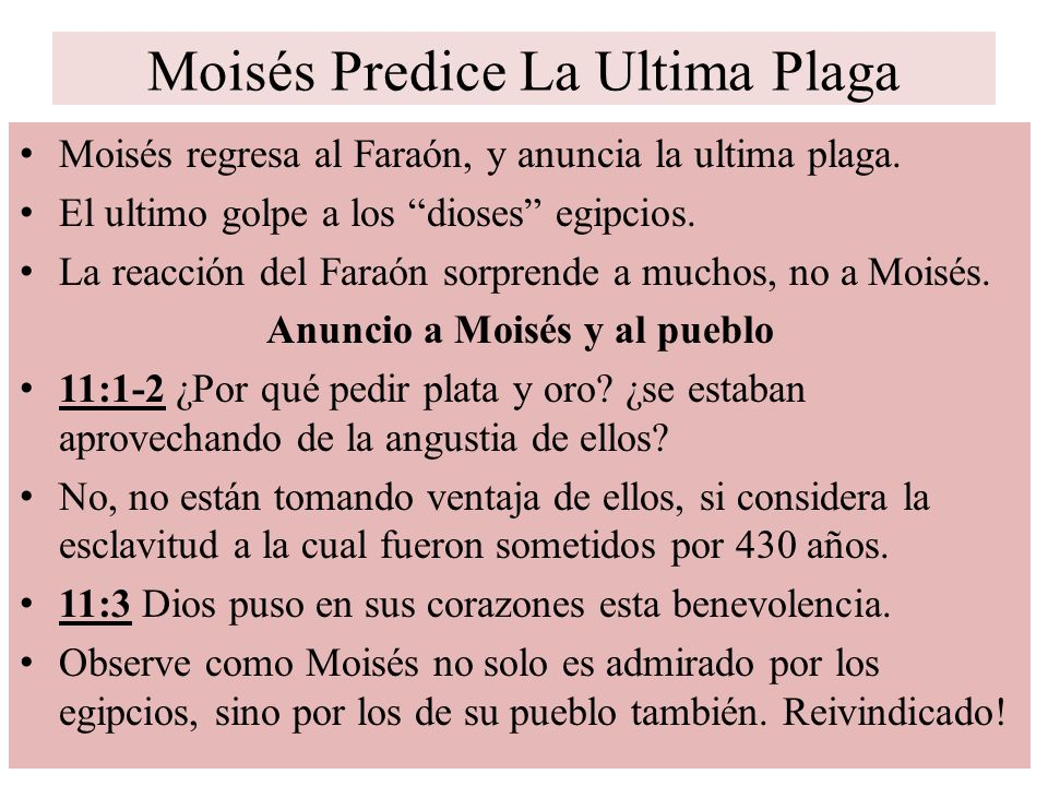 Moisés Predice La Ultima Plaga