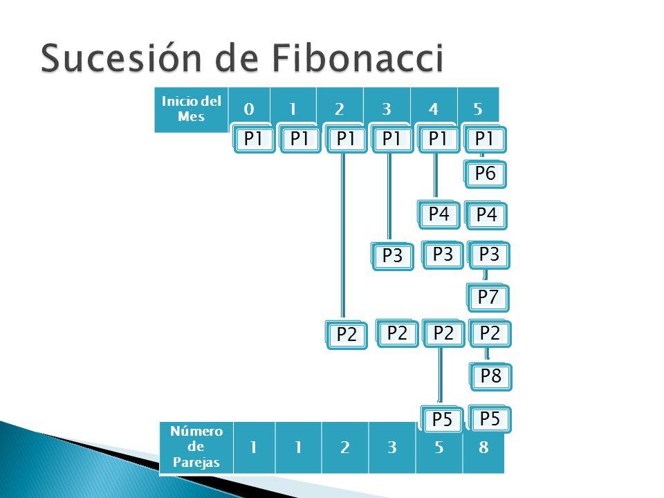 Sucesión de Fibonacci P1 P2 P3 P4 P6 P7 P5 P8 1 2 3 4 5 1 2 3 5 8