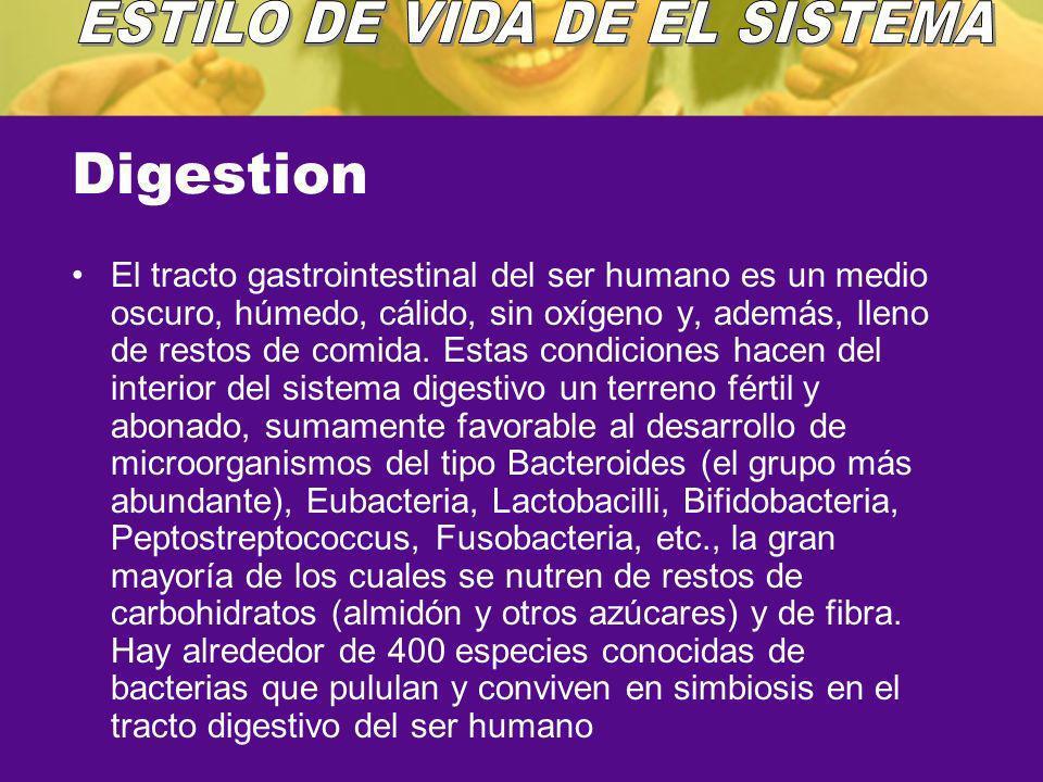 ESTILO DE VIDA DE EL SISTEMA
