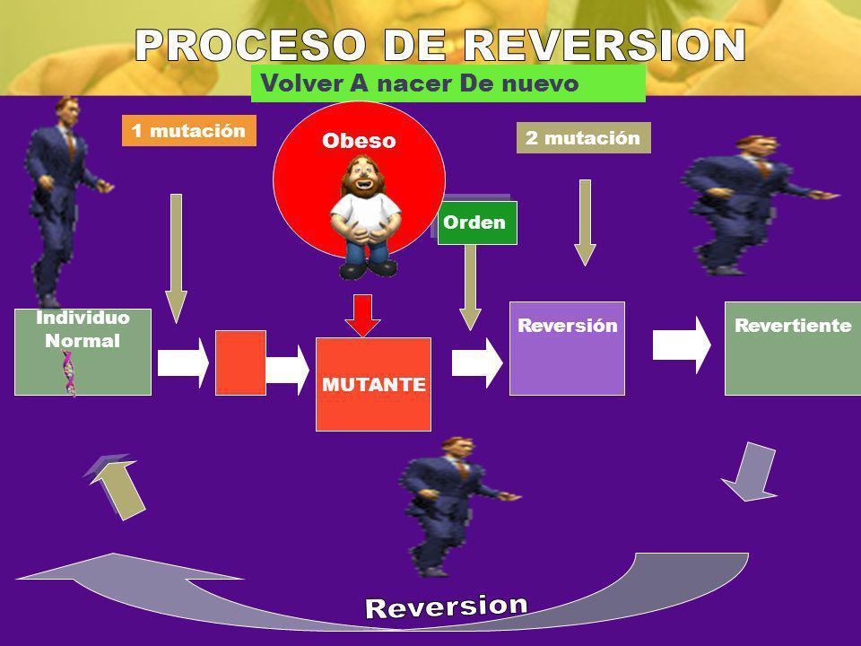 PROCESO DE REVERSION Reversion Volver A nacer De nuevo Obeso
