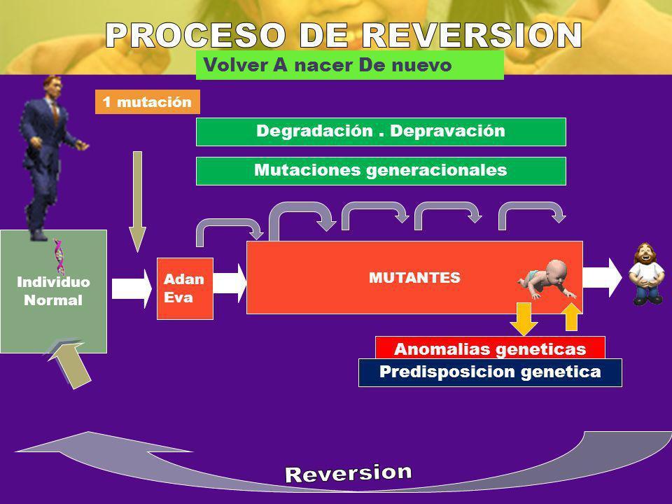 PROCESO DE REVERSION Reversion Volver A nacer De nuevo