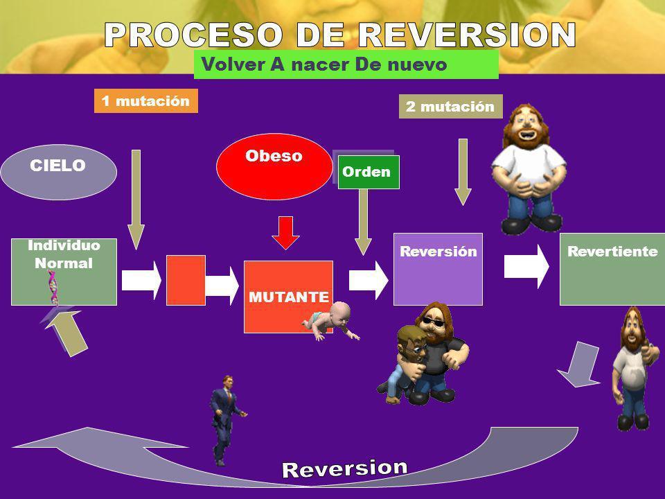 PROCESO DE REVERSION Reversion Volver A nacer De nuevo Obeso CIELO