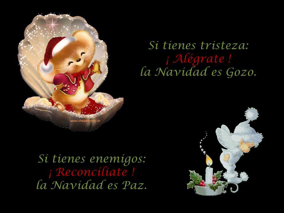 Si tienes tristeza: ¡ Alégrate . la Navidad es Gozo.